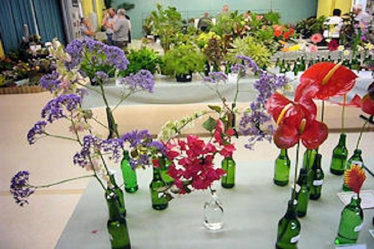 Flowering  Cuts