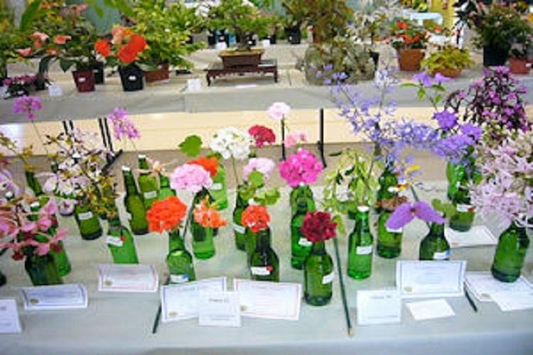 Flowering Cuts 2